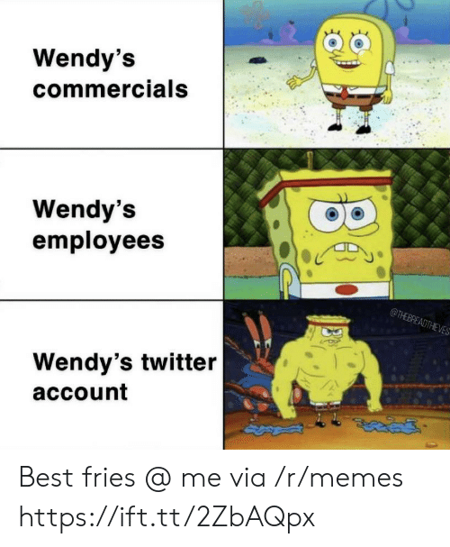 commercials: Wendy's  commercials  Wendy's  employees  @THEBREADTHEVES  Wendy's twitter  account Best fries @ me via /r/memes https://ift.tt/2ZbAQpx