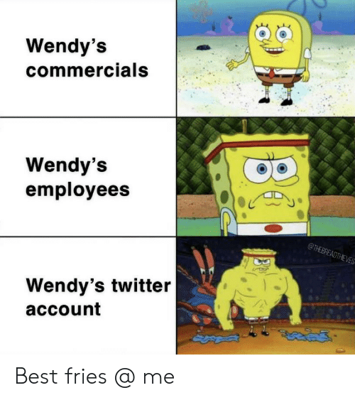 commercials: Wendy's  commercials  Wendy's  employees  @THEBREADTHEVES  Wendy's twitter  account Best fries @ me