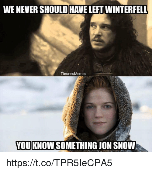 Memes, Jon Snow, and Snow: WENEVERSHOULD HAVE LEFTWINTERFELL  Thrones Memes  YOU KNOW SOMETHING JON SNOW https://t.co/TPR5IeCPA5