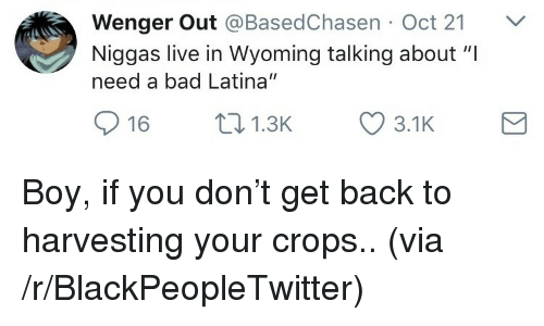 """Harvesting: Wenger Out @BasedChasen Oct 21 V  Niggas live in Wyoming talking about """"I  need a bad Latina""""  16 1.3 3.1K <p>Boy, if you don't get back to harvesting your crops.. (via /r/BlackPeopleTwitter)</p>"""