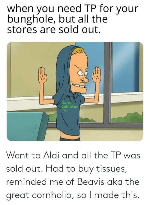 beavis: Went to Aldi and all the TP was sold out. Had to buy tissues, reminded me of Beavis aka the great cornholio, so I made this.
