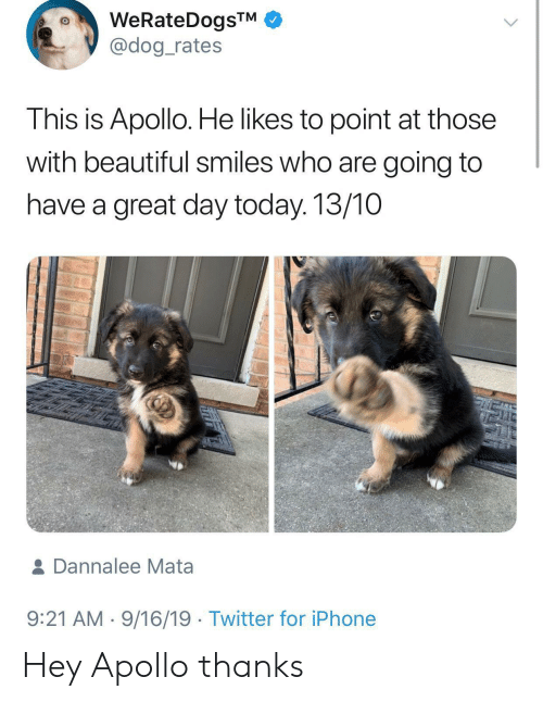have a great day: WeRateDogsTM  @dog_rates  This is Apollo. He likes to point at those  with beautiful smiles who are going to  have a great day today. 13/10  & Dannalee Mata  9:21 AM 9/16/19 Twitter for iPhone Hey Apollo thanks