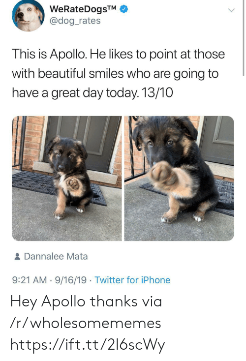 have a great day: WeRateDogsTM  @dog_rates  This is Apollo. He likes to point at those  with beautiful smiles who are going to  have a great day today. 13/10  & Dannalee Mata  9:21 AM 9/16/19 Twitter for iPhone Hey Apollo thanks via /r/wholesomememes https://ift.tt/2l6scWy