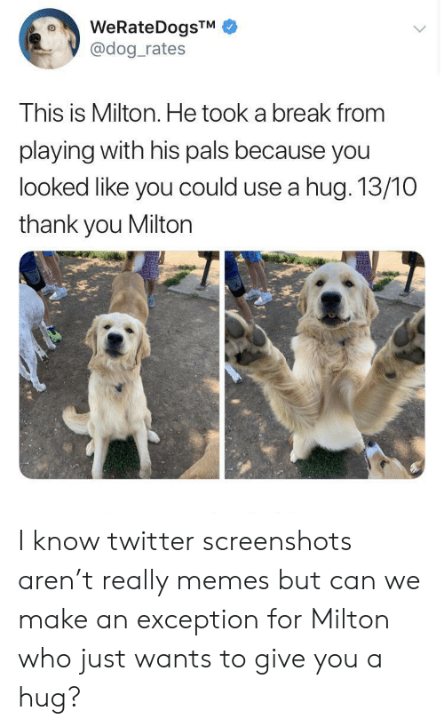 pals: WeRateDogsTM  @dog_rates  This is Milton. He took a break from  playing with his pals because you  looked like you could use a hug. 13/10  thank you Milton I know twitter screenshots aren't really memes but can we make an exception for Milton who just wants to give you a hug?