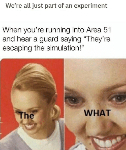 "experiment: We're all just part of an experiment  When you're running into Area 51  and hear a guard saying ""They're  escaping the simulation!""  WHAT  The"
