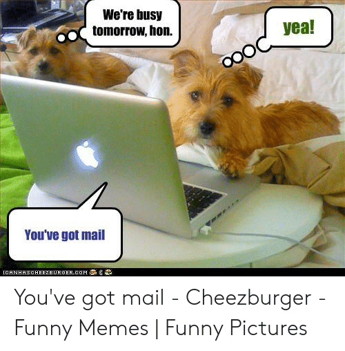 You Ve Got Mail Meme: We're busy  tomorrow, hon.  yea!  You've got mail  ICANHASOHEEZBURGER.COM You've got mail - Cheezburger - Funny Memes | Funny Pictures