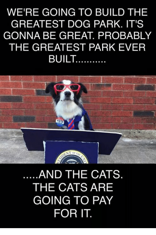 And The Cats Will Pay For It Dog Park