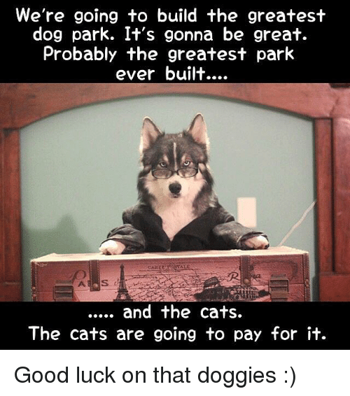 Memes, 🤖, and Park: We're going to build the greatest  dog park. It's gonna be great.  Probably the greatest park  ever built....  and the cats.  The cats are going to pay for it. Good luck on that doggies :)