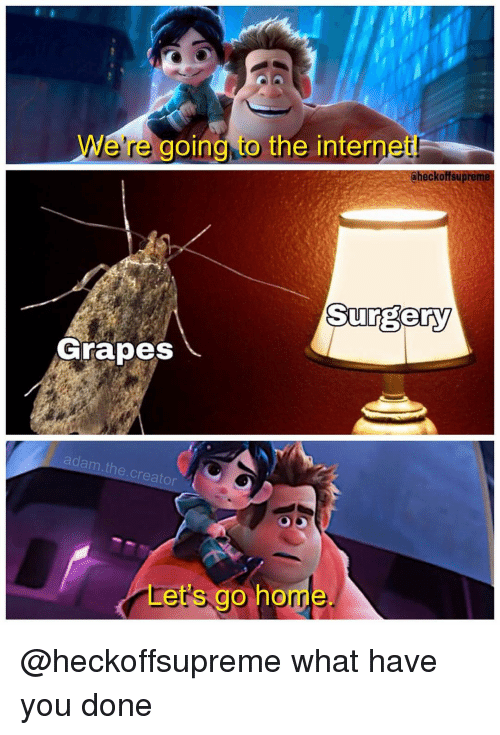 what have you done: We're going, to the internet  heckoffsupreme  Surgery  GrapesS  adam  .t  he.creator  Let's go home @heckoffsupreme what have you done