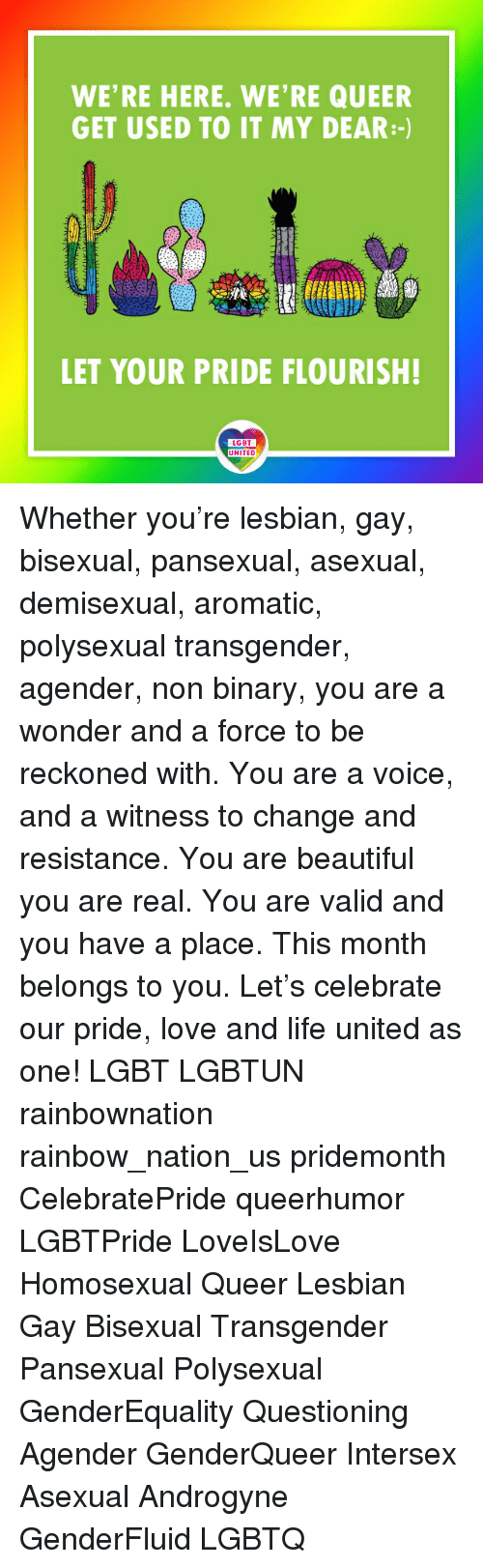 Beautiful, Lgbt, and Life: WE'RE HERE. WE'RE QUEER  GET USED TO IT MY DEAR:-)  LET YOUR PRIDE FLOURISH!  LGBT  UNITED Whether you're lesbian, gay, bisexual, pansexual, asexual, demisexual, aromatic, polysexual transgender, agender, non binary, you are a wonder and a force to be reckoned with. You are a voice, and a witness to change and resistance. You are beautiful you are real. You are valid and you have a place. This month belongs to you. Let's celebrate our pride, love and life united as one! LGBT LGBTUN rainbownation rainbow_nation_us pridemonth CelebratePride queerhumor LGBTPride LoveIsLove Homosexual Queer Lesbian Gay Bisexual Transgender Pansexual Polysexual GenderEquality Questioning Agender GenderQueer Intersex Asexual Androgyne GenderFluid LGBTQ