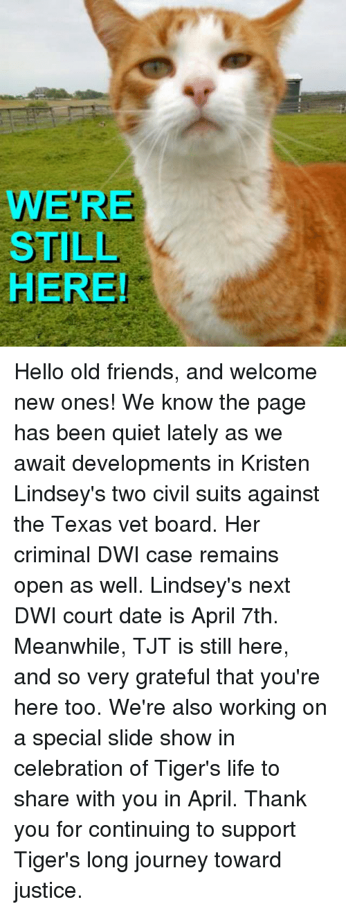 Memes, 🤖, and Page: WERE  STILL  HERE! Hello old friends, and welcome new ones! We know the page has been quiet lately as we await developments in Kristen Lindsey's two civil suits against the Texas vet board. Her criminal DWI case remains open as well. Lindsey's next DWI court date is April 7th. Meanwhile, TJT is still here, and so very grateful that you're here too.   We're also working on a special slide show in celebration of Tiger's life to share with you in April. Thank you for continuing to support Tiger's long journey toward justice.