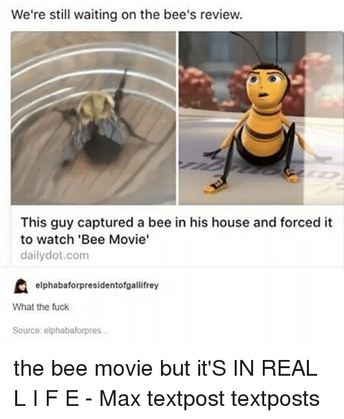 Bee Movie But: We're still waiting on the bee's review.  This guy captured a bee in his house and forced it  to watch 'Bee Movie'  daily dot.com  elphabaforpresidentofgallifrey  What the fuck  Source: elphabaforpres. the bee movie but it'S IN REAL L I F E - Max textpost textposts