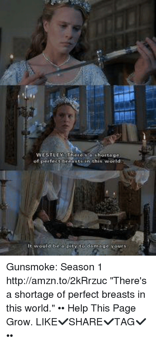 essays on the princess bride