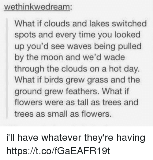 Smalls: wethinkwedream:  What if clouds and lakes switched  spots and every time you looked  up you'd see waves being pulled  by the moon and we'd wade  through the clouds on a hot day.  What if birds grew grass and the  ground grew feathers. What if  flowers were as tall as trees and  trees as small as flowers. i'll have whatever they're having https://t.co/fGaEAFR19t