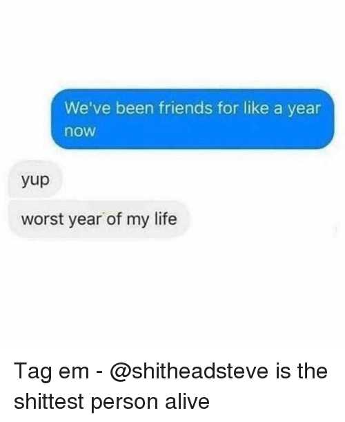 Alive, Friends, and Life: We've been friends for like a year  now  yup  worst year of my life Tag em - @shitheadsteve is the shittest person alive