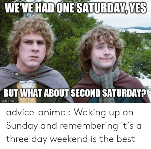 Three Day Weekend: WEVE HAD ONESATURDAY, YES  BUT WHAT ABOUT SECOND SATURDAY?  imgflip.com advice-animal:  Waking up on Sunday and remembering it's a three day weekend is the best