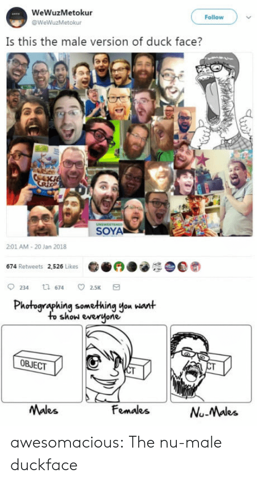 Duck Face: WeWuzMetokur  @WeWuzMetokur  Follow  Is this the male version of duck face?  SOYA  2:01 AM-20 Jan 2018  674 Retweets 2,526 Likes  0234 674 2.5K a  Photographing something you want  to show everjone  OBJECT  Males  FomalesNuMaks  Nu-Males awesomacious:  The nu-male duckface