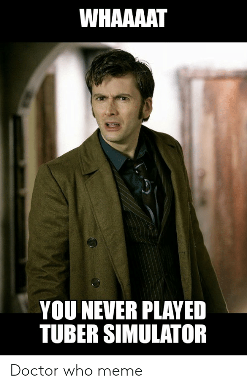 Doctor Who Meme: WHAAAAT  YOU NEVER PLAYED  TUBER SIMULATOR Doctor who meme