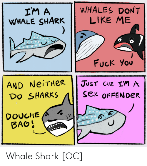 whale: WHALES DON'T  LIKE ME  IM A  WHALE SHARK  )  Fuck You  AND NeiTHeR  Do SHARKS  JUST CUZ LM A  sex OFFEN0ER  DOUCHE  BAO! Whale Shark [OC]