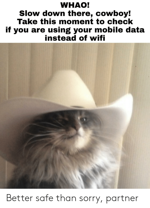 slow down: WHAO!  Slow down there, cowboy!  Take this moment to check  if you are using your mobile data  instead ot witi Better safe than sorry, partner