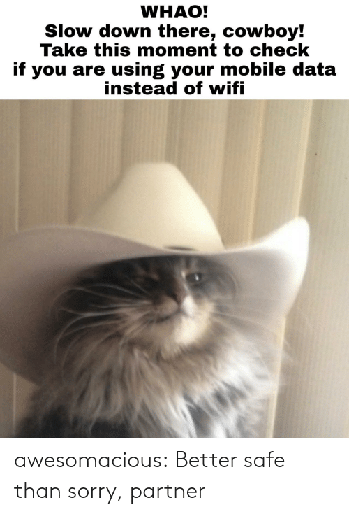 slow down: WHAO!  Slow down there, cowboy!  Take this moment to check  if you are using your mobile data  instead ot witi awesomacious:  Better safe than sorry, partner