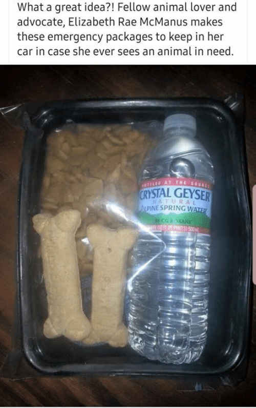 packages: What a great idea?! Fellow animal lover and  advocate, Elizabeth Rae McManus makes  these emergency packages to keep in her  car in case she ever sees an animal in need  YSTAL GEYSER  NATURAL  PINE SPRING W