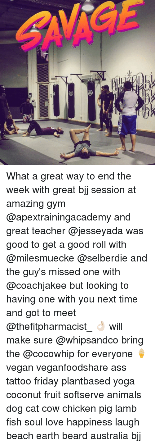 Pigly: What a great way to end the week with great bjj session at amazing gym @apextrainingacademy and great teacher @jesseyada was good to get a good roll with @milesmuecke @selberdie and the guy's missed one with @coachjakee but looking to having one with you next time and got to meet @thefitpharmacist_ 👌🏻 will make sure @whipsandco bring the @cocowhip for everyone 🍦 vegan veganfoodshare ass tattoo friday plantbased yoga coconut fruit softserve animals dog cat cow chicken pig lamb fish soul love happiness laugh beach earth beard australia bjj
