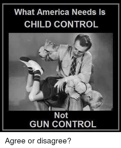 America, Memes, and Control: What America Needs Is  CHILD CONTROL  Not  GUN CONTROL Agree or disagree?