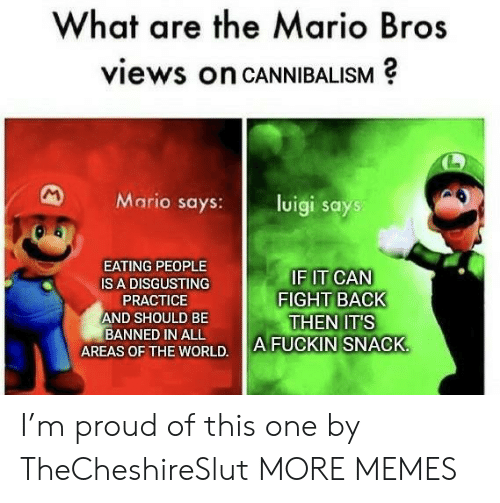 Back Then: What are the Mario Bros  views on CANNIBALISM  M  Mario says:  luigi says  EATING PEOPLE  IF IT CAN  FIGHT BACK  THEN IT'S  A FUCKIN SNACK  IS A DISGUSTING  PRACTICE  AND SHOULD BE  BANNED IN ALL  AREAS OF THE WORLD. I'm proud of this one by TheCheshireSlut MORE MEMES