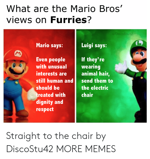 luigi: What are the Mario Bros'  views on Furries?  u/DiscoStu42  Mario says:  Luigi says:  M  Even people  If they're  wearing  animal hair,  with unusual  interests are  still human and  send them to  should be  the electric  treated with  dignity and  respect  chair Straight to the chair by DiscoStu42 MORE MEMES