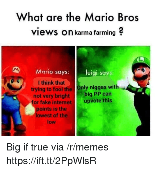 Farming: What are the Mario Bros  views On karma farming ?  Mario says: luigi says  I think that  trying to fool the Only niggas with  not very bright big PP can  or fake internet upvote this  points is the  lowest of the  low Big if true via /r/memes https://ift.tt/2PpWlsR