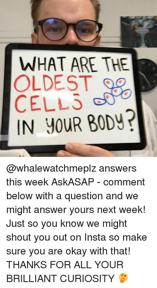 Memes, Okay, and Brilliant: WHAT ARE THE  OLDEST  CELLS  IN YOUR BODv? @whalewatchmeplz answers this week AskASAP - comment below with a question and we might answer yours next week! Just so you know we might shout you out on Insta so make sure you are okay with that! THANKS FOR ALL YOUR BRILLIANT CURIOSITY 🤔