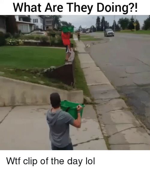 Funny, Lol, and Wtf: What Are They Doing?! Wtf clip of the day lol
