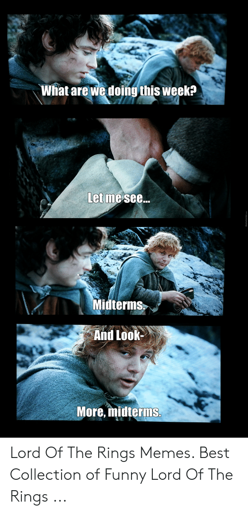 Funny Lord Of The Rings: What are we doing this week?  Let me see...  Midterms,  And Look-  More, midterims Lord Of The Rings Memes. Best Collection of Funny Lord Of The Rings ...