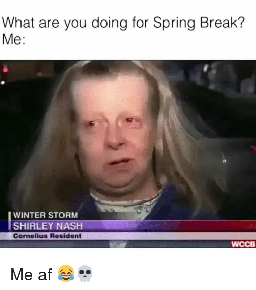 winter storm: What are you doing for Spring Break?  Me:  WINTER STORM  SHIRLEY NASH  Cornelius Resident  WCCB Me af 😂💀