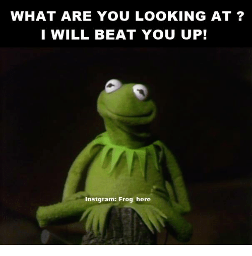 Kermit the Frog, Ups, and Beats: WHAT ARE YOU LOOKING AT?  I WILL BEAT YOU UP!  Instgram: Frog here