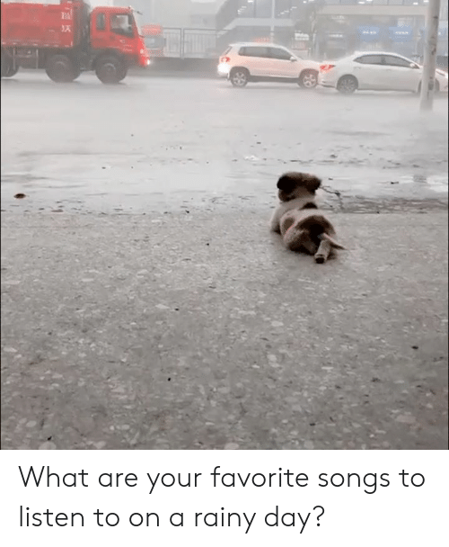 rainy: What are your favorite songs to listen to on a rainy day?