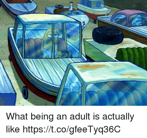 Being an Adult, Funny, and Adult: What being an adult is actually like https://t.co/gfeeTyq36C