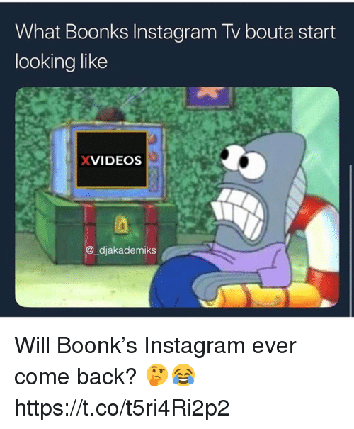 Instagram, Back, and Xvideos: What Boonks Instagram Tv bouta start  looking like  XVIDEOS  @_djakademiks Will Boonk's Instagram ever come back? 🤔😂 https://t.co/t5ri4Ri2p2