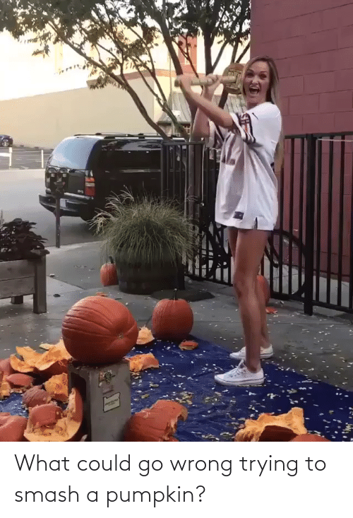 Smashing: What could go wrong trying to smash a pumpkin?
