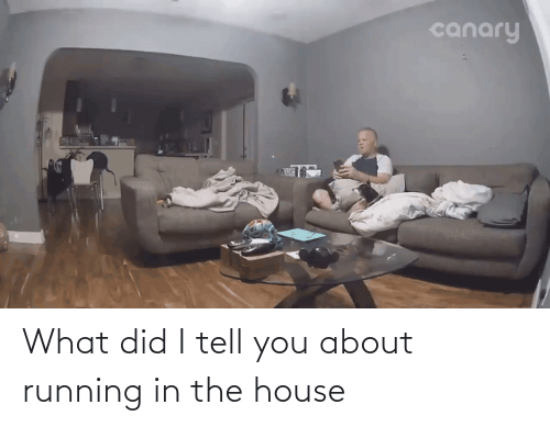 Running In The: What did I tell you about running in the house