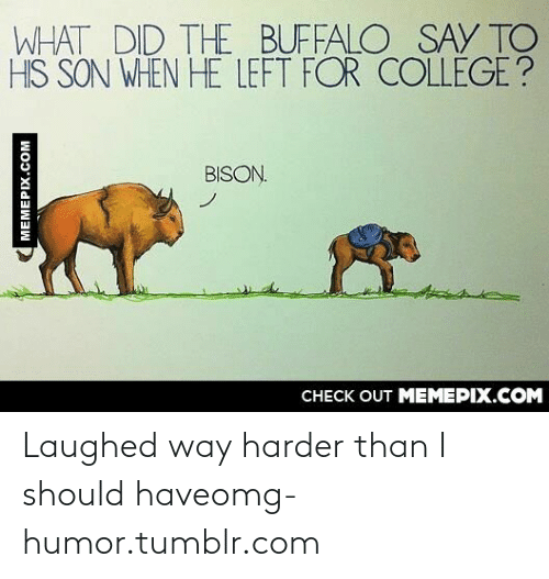What Did The Buffalo Say To His Son When He Left For College: WHAT DID THE BUFFALO SAY TO  HIS SON WHEN HE LEFT FOR COLLEGE ?  BISON.  CHECK OUT MEMEPIX.COM  MEMEPIX.COM Laughed way harder than I should haveomg-humor.tumblr.com