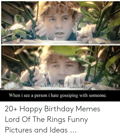 lord of the rings funny: What did u say bitch!?  When i see a person i hate gossiping with someone. 20+ Happy Birthday Memes Lord Of The Rings Funny Pictures and Ideas ...