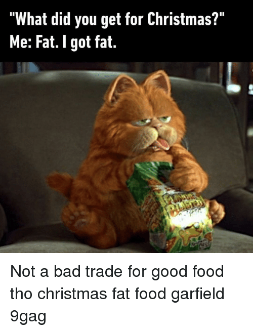 "What Did You Get: ""What did you get for Christmas?""  Me: Fat. I got fat. Not a bad trade for good food tho⠀ christmas fat food garfield 9gag"