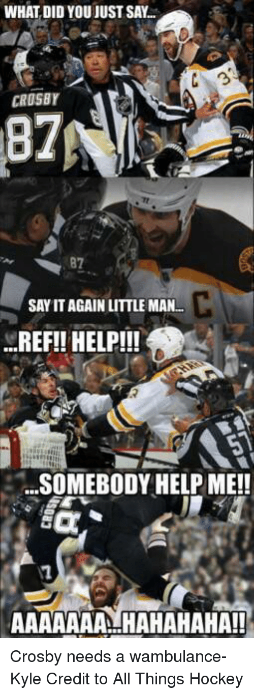 wambulance: WHAT DID YOU JUST SAY  C 3  CROSBY  SAY IT AGAIN LITTLE MAN  REF!! HELP!!  SOMEBODY HELP ME!!  AAAAAAA HAHAHAHA!! Crosby needs a wambulance-Kyle Credit to All Things Hockey