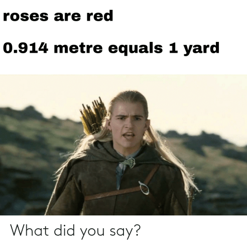 what did you say: What did you say?