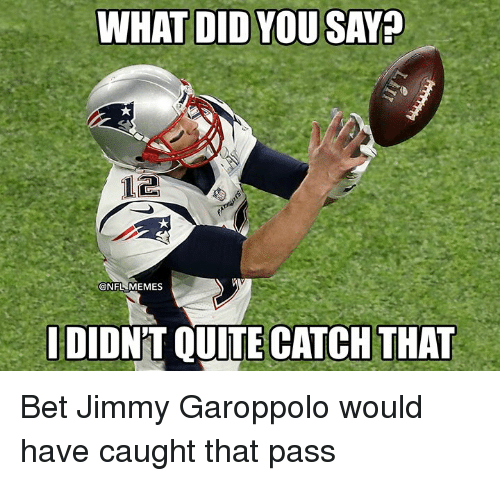 Memes, Nfl, and Quite: WHAT DID YOU SAY  @NFL MEMES  DIONT QUITE CATCH THAT Bet Jimmy Garoppolo would have caught that pass