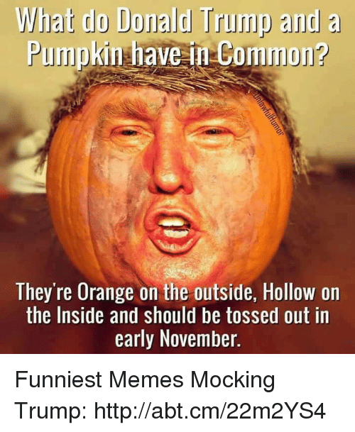 Donald Trump, Memes, and Common: What do Donald Trump and  a  Pumpkin have in Common?  They're Orange on the outside, Hollow on  the Inside and should be tossed out in  early November. Funniest Memes Mocking Trump: http://abt.cm/22m2YS4