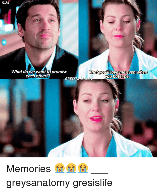 We Love Each Other Meme: What Do We Want To Promise Each Other? GREYS That Would