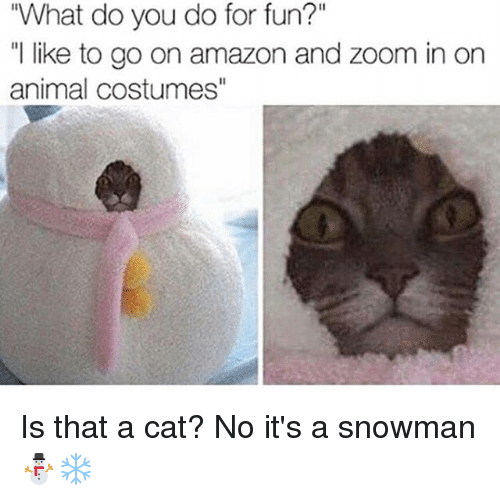 """zoom ins: """"What do you do for fun?""""  """"l like to go on amazon and zoom in on  animal costumes"""" Is that a cat? No it's a snowman ⛄️❄️"""